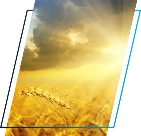 SCU-infraredsauna-photo-2-WEB-mobile